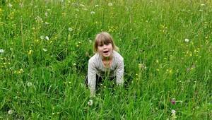 İnsanlar neden çimen yiyerek beslenemiyor?