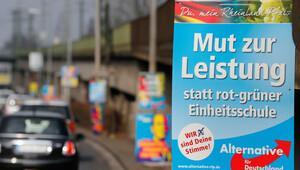 Almanya'da AfD tedirginliği