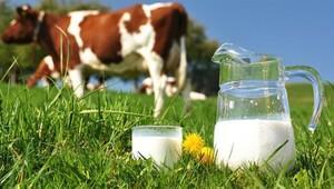 Süt krizi nasıl çözülür ?