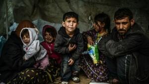 'Zengin ülkeler Suriyeli mültecilerin sadece yüzde 1,4'ünü kabul etti'
