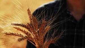 Rusya krizden etkilenen çiftçilerin borçlarının ertelenmesini istedi