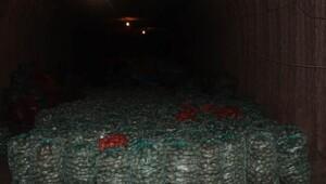 Depolarda kalan patatesler ihraç edilecek