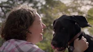 Bu köpek maması reklamı izleyenleri hem duygulandırdı hem meraklandırdı