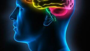 Yeni bir lisan öğrendiğimizde beynimizde neler oluyor?