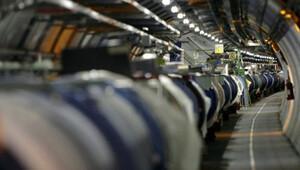 Gelincik Hadron Çarpıştırıcısı'na kısa devre yaptırdı