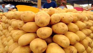 750 kilo patates, 200 kilo zeytin alan otele 'ticaret borsasına üye ol' yazısı