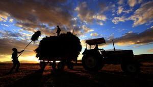 Türkiye'de tarımı 5,4 milyon kişi sırtlıyor
