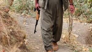 PKK'nın kanlı yaz stratejisi!