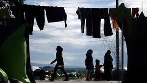 Sığınmacı kampında genelev açtılar