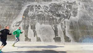 Roma'nın kiri sanat eserine dönüştü