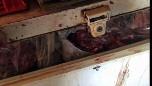 5 ton kaçak domuz eti ele geçirildi