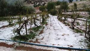 Ergani'nin 40 köyünü dolu vurdu üretici perişan