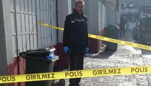 Bursa'da vahşet: Bebeklerini çöpe atmışlar