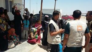 Felluce'de anneler açlıktan çocuklarını öldürüyor