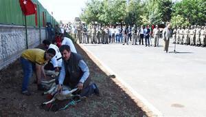 7 şehit veren tabur, 7 kurban kesilerek karşılandı