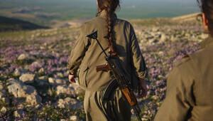 Valilik açıkladı: PKK, 3 teröristi 'ajan' diye öldürüp kuyuya attı