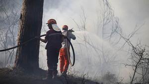 Son dakika haberleri: Antalya'da bir orman yangını daha