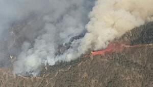 Kırbrıs Rum Kesimi'ndeki yangın büyüyor