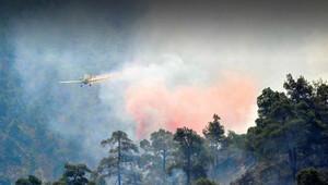 Güney Kıbrıs Türkiye'nin yangına müdahale talebini kabul etti