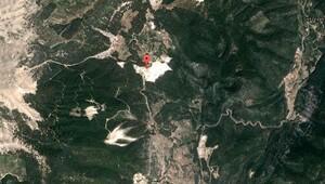 Antalya'da 5 bin ağaç tehlike altında