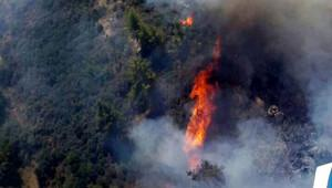 Kumluca'da yerleşim yerleri içinde yangın