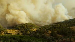 Kumluca'da yangın söndürülemiyor