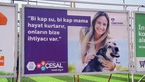 Sokak hayvanlarına Çağla Kubat desteği