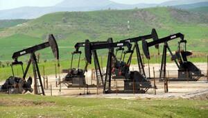 Brent petrol 50 doların üzerinde seyrediyor