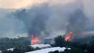 Kumluca yangınında elektrik hattı şüphesi