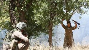 Lice'de 4 terörist öldürüldü, 2 terörist yakalandı