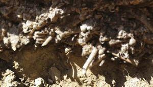 İSKİ kazısında insan kemikleri bulundu