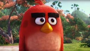 Windows Phone'a artık Angry Birds yok!