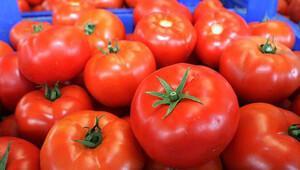Meyve ve sebze ihracatçılarının gözü Rusya'daki görüşmelerde