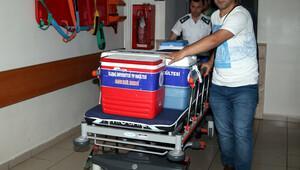 Yusuf Yılmaz'ın organları 3 kişiye 'hayat' verdi