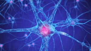Sinir hücreleri kontrol edilerek hastalıklar iyileştirilecek