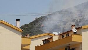 Kuşadası'nda makilik ve otluk alanda yangın