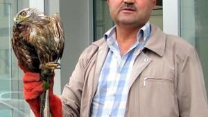 Yaralı yabani kuşlar, tedaviye alındı