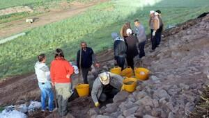 Yozgat'ta arkeolojik kazılar devam ediyor