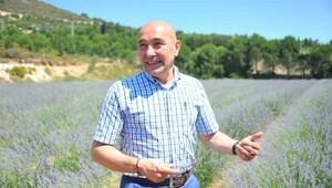 Seferihisar'da 'Başka bir tarım mümkün'