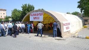 Demokrasi şehitleri için Muş'ta taziye çadırı