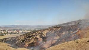 Bingöl'de anız yangını korkuttu