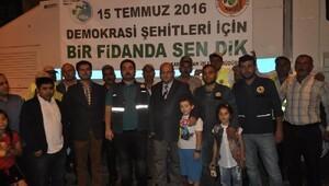Demokrasi şehitleri anısına Kars'ta 2 bin fidan