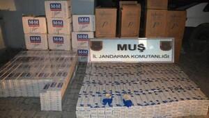 Muş'ta 11 bin 500 paket kaçak sigara ele geçti