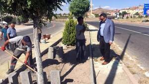 Başkan Cabbar, peyzaj çalışmalarını yerinde inceledi