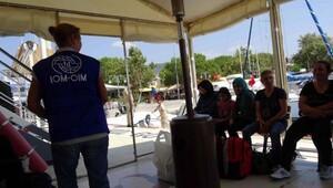 Ayvacık'ta 15 Suriyeli yakalandı
