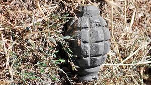Çeşme'de bombalı baskına giderken yakalandılar