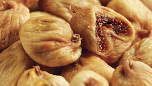 Kuru incir ihracatında yeni sezon başlıyor
