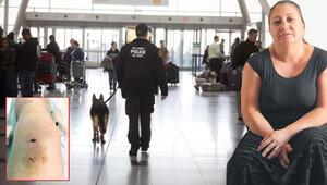 JFK'de Türk yolcuya polis köpeği saldırdı
