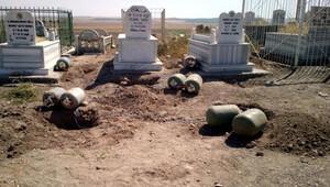 Aile mezarlığına bomba yerleştirmesiyle ilgili 13 gözaltı