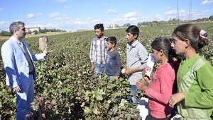 Tarım işçisi çocuklara okul ve öğretmen desteği sağlanacak